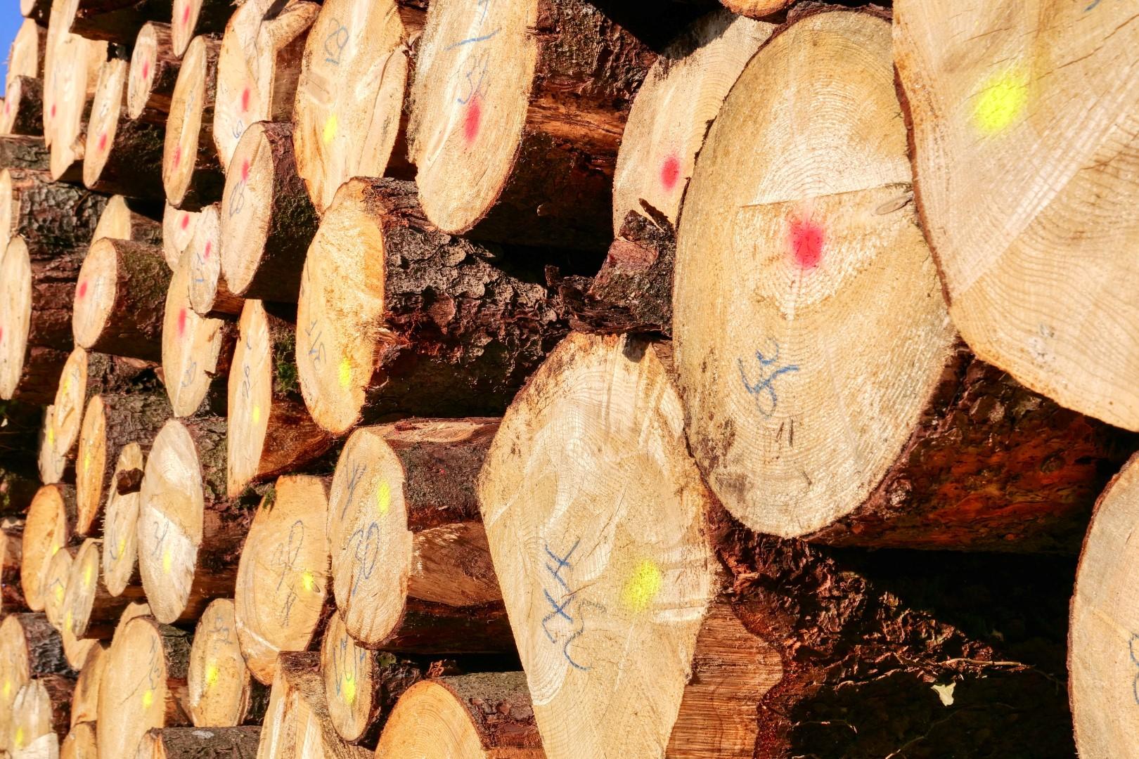 brandhout (Custom)